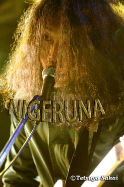 NIGERUNA:平間亮